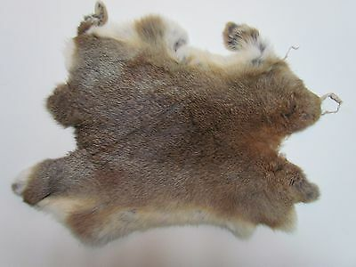 Soft Rabbit Fur Pelt Tanned For Crafts/projects (Brown) - Approx 16 In X 10 In
