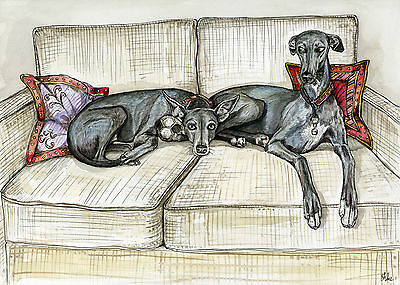 A Little Envy - Whippet Art Print
