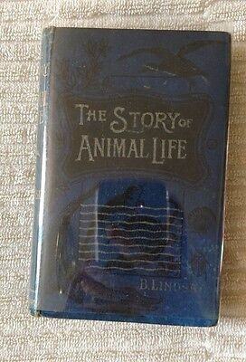 Antique Book THE STORY OF ANIMAL LIFE by B Lindsey 1902 HC 47 illustrations