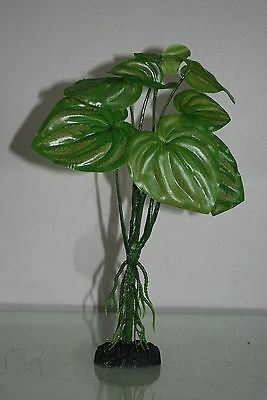 Aquarium Green Plant With Roots x 2 Pieces Approx 20 cms Tall 58C