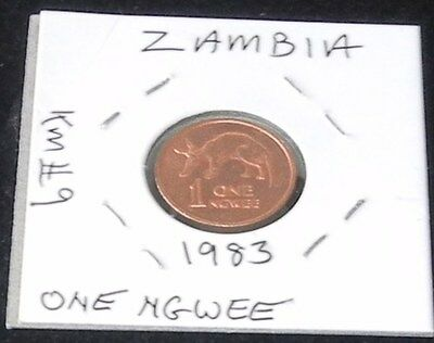 NICE SHINY TWO COIN SET ~ 1983 Zambia 1 NGWEE (KM# 9) & 2 NGWEE (KM# 10a) Pieces