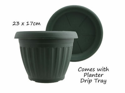 12 garden plant pot round with saucer diameter 23cm 17cm green bulk wholesale lo