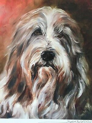 Bearded Collie Dog Sale Of Unmounted Prints