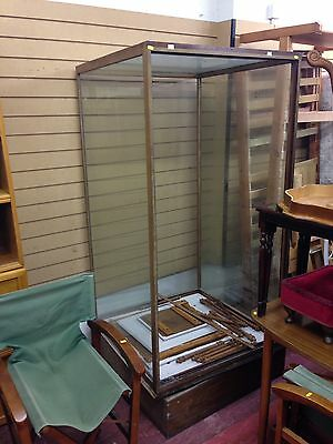 Vintage Victorian Shop Display Glass Case