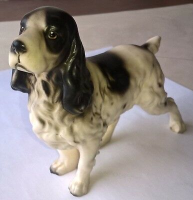Porcelain Springer Spaniel Vintage Numbered Dog