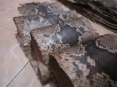 100 inch Python snakeskin Leather real  hide snake skin tanned Genuine