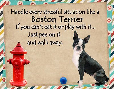 BOSTON TERRIER Handle Stressful Situations Dog Fridge Magnet