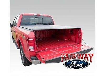 15 thru 18 F-150 OEM Genuine Ford Bed Tail Gate Dust Seal - Keep The Dirt Out!