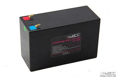 LiFeEnergy LiFePO4 Akku 12V 8Ah mit BMS