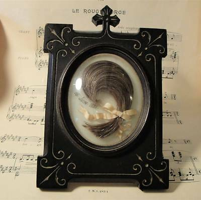 Antique French Mourning Hair Art Domed Glass Wooden Frame c1890