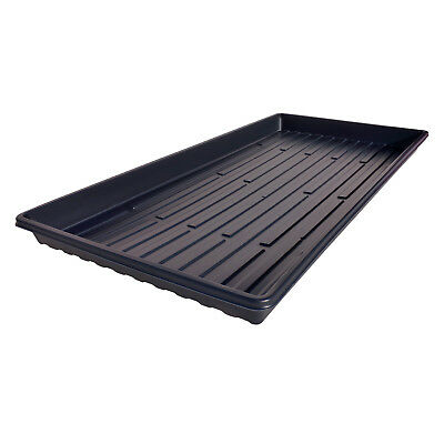 50 Heavyweight Shallow Germination Trays NO HOLES MADE IN USA