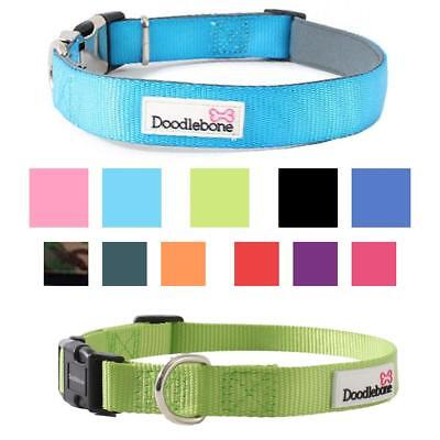 Doodlebone BOLD DOG COLLAR Puppy Adjustable Stylish Bright Padded Strong Nylon
