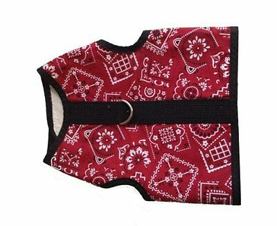 X-Small Red Bandanna Cat Harness by Kitty Holster