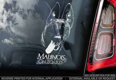 Belgian Malinois - Car Window Sticker - Dog Sign -V05