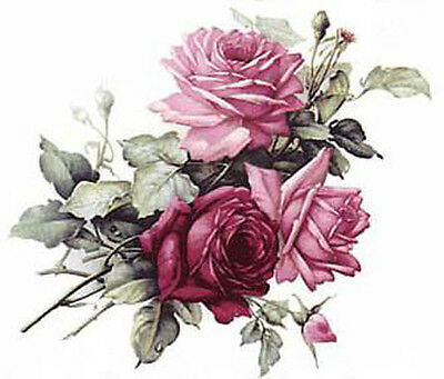 BeST ChiC CaBbaGe RoSeS ShaBby WaTerSLiDe DeCALs *FurNiTuRe SiZe*