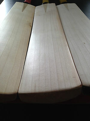 Grade 1 English Willow Cricket Bat Knocked In Ready To Go