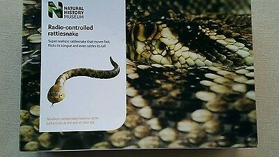 Rattle snake. radio-controlled . Natural History Museum. Remote control.