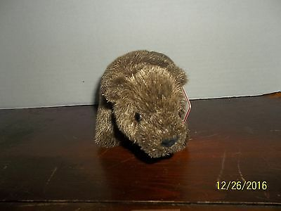 """Gund Jasper Brown Grizzly Bear Plush With Tags 4054164 4"""" Tall"""