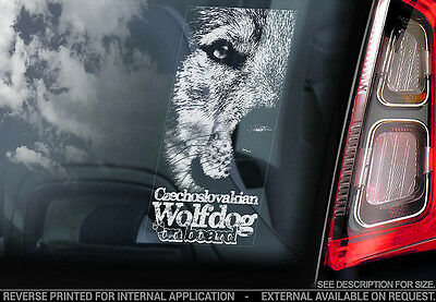 Czechoslovakian Wolfdog - Car Window Sticker - Dog Sign -V04