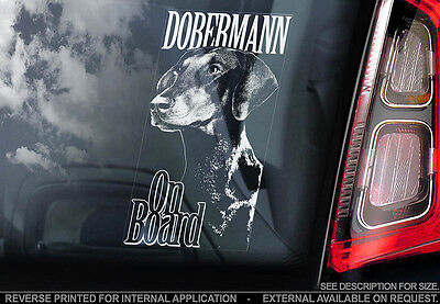 Dobermann - Car Window Sticker - Dog Sign -V02