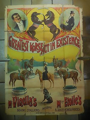 rare  affiche ancienne cirque chevaux spectacles horses stallions circus poster