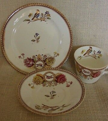 1904 Antique English Cup Saucer & Plate Set Aesthetic Brown Transfer Birds Rd #