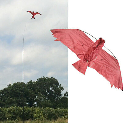 3D Brown hawk Kite kits. Bird Scarer Protect Farmers Crops. With A Free Line
