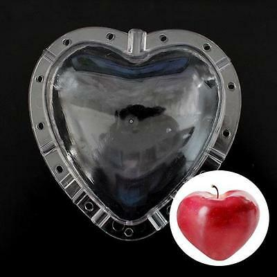 Heart-shaped Fruits Shaping Mold Garden Apple Pear Peach Growth Forming Mold To