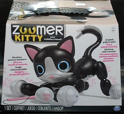 """ZOOMER KITTY """"Chat Interactif"""""""