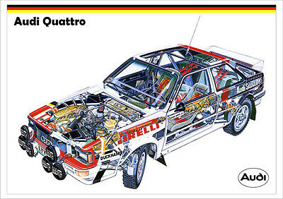 Audi Quattro Group B Rally Car Detailed Cutaway Image A3 Size Poster Print