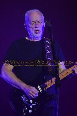 David Gilmour Photo 8x12 or 8x10 inch 2016 MSG NYC, NY Rattle That Lock Tour 82