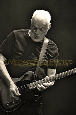 David Gilmour Photo 8x12 or 8x10 inch 2016 MSG NYC, NY Rattle That Lock Tour 85b