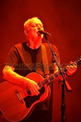 David Gilmour Photo 8x12 or 8x10 inch 2016 MSG NYC, NY Rattle That Lock Tour 87