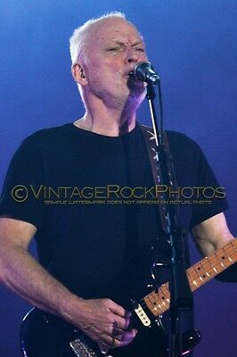 David Gilmour Photo 8x12 or 8x10 inch 2016 MSG NYC NY Rattle That Lock Tour 123