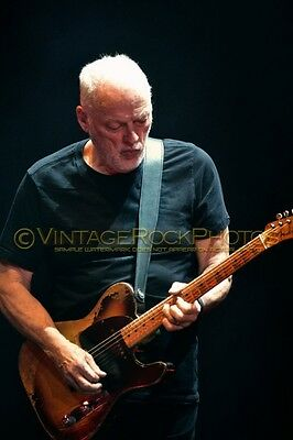 David Gilmour Photo 8x12 or 8x10 inch 2016 MSG NYC, NY Rattle That Lock Tour 157