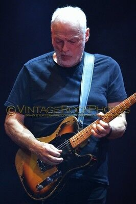 David Gilmour Photo 8x12 or 8x10 inch 2016 MSG NYC, NY Rattle That Lock Tour 61