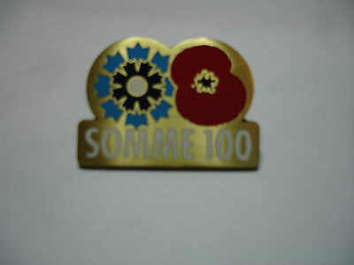 Somme 100 pin