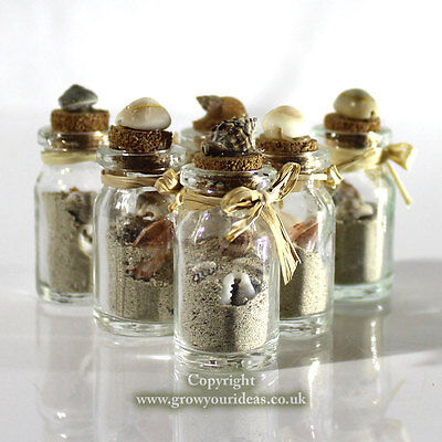 6 x Beach in a bottle | Micro shells and real beach sand inside small bottle