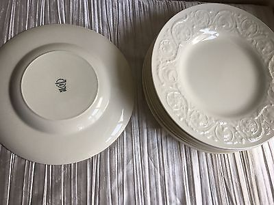 Wedgwood Patrician ivory dinner plate 10 1/2 inches 1 of 8 raised rim design