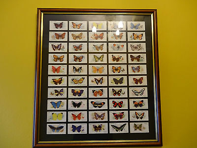 Full Set of 50 Players Butterflies 1932 in a DOUBLE SIDED Glazed Frame.