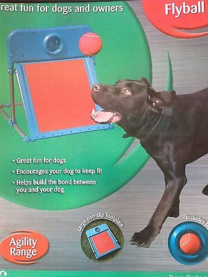 Dog Collection Agility Range Flyball