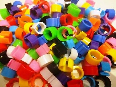 50 x 8mm mixed colour plastic split rings racing pigeon dove-Supplied by 'NPR'
