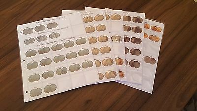 Classic Coin Album Pages For Pre-Decimal Coin Collections