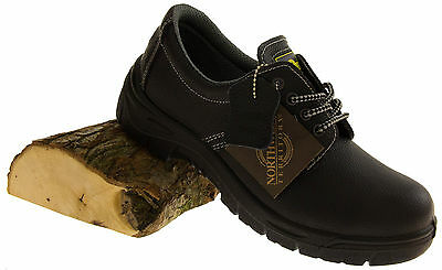 Mens Leather NORTHWEST TERRITORY Tough Safety Warehouse Industrial Work Shoes