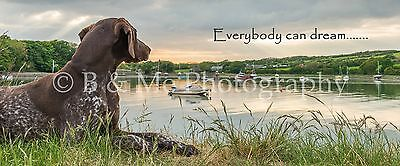 German Shorthaired Pointer Canvas