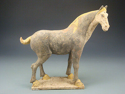 Ancient Chinese Terracotta Tang Dynasty Gray Pottery Horse - 618 AD