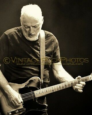 David Gilmour Photo 8x10 inch 2016 MSG NYC, NY Rattle That Lock Concert Tour 82s