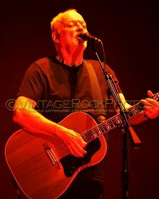 David Gilmour Photo 8x10 inch 2016 MSG NYC, NY Rattle That Lock Concert Tour 149