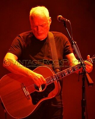 David Gilmour Photo 8x10 inch 2016 MSG NYC, NY Rattle That Lock Concert Tour 141