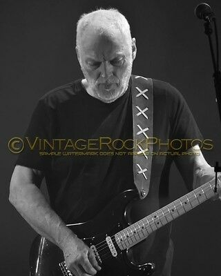 David Gilmour Photo 8x10 inch 2016 MSG NYC NY Rattle That Lock Concert Tour 132b